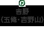 吉野(五條・吉野山)